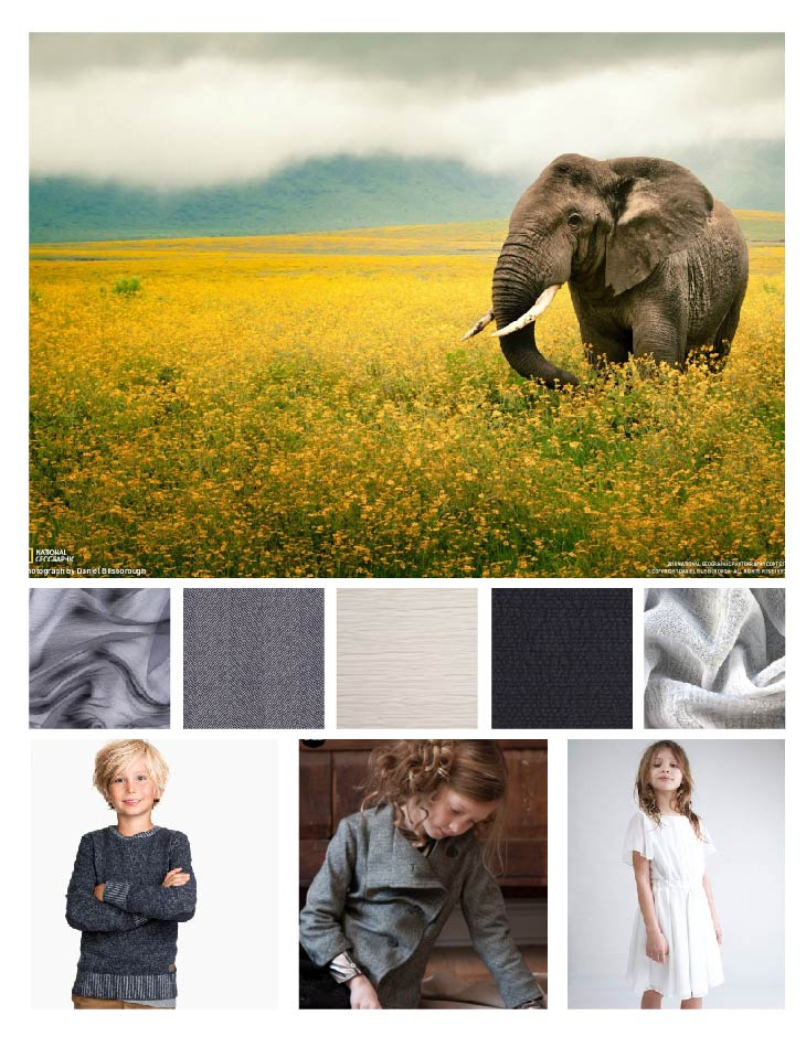 Elephant Collage